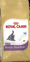Royal Canin КITTEN BRITISH SHORTHAIR 400гр.корм для котят британской короткошерстной  до 12мес.