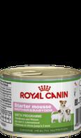 Royal Canin STARTER MOUSSE 0,195кг для щенков с момента отъема до 2 месяцев.