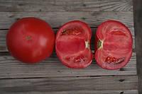 Семена томат KS 38 F1 500 сем. Китано, фото 1