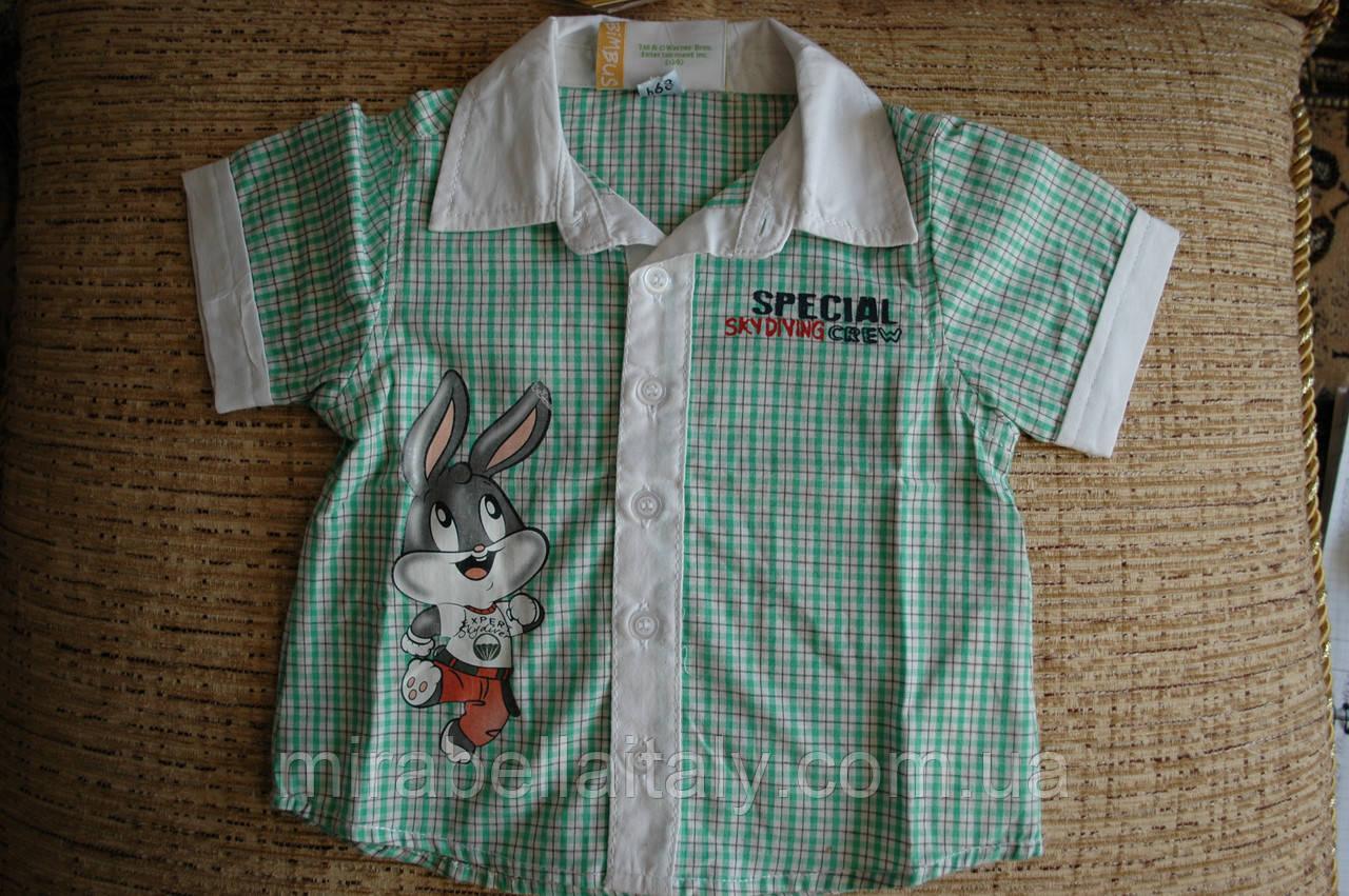 Летняя рубашка Bimbus для мальчика