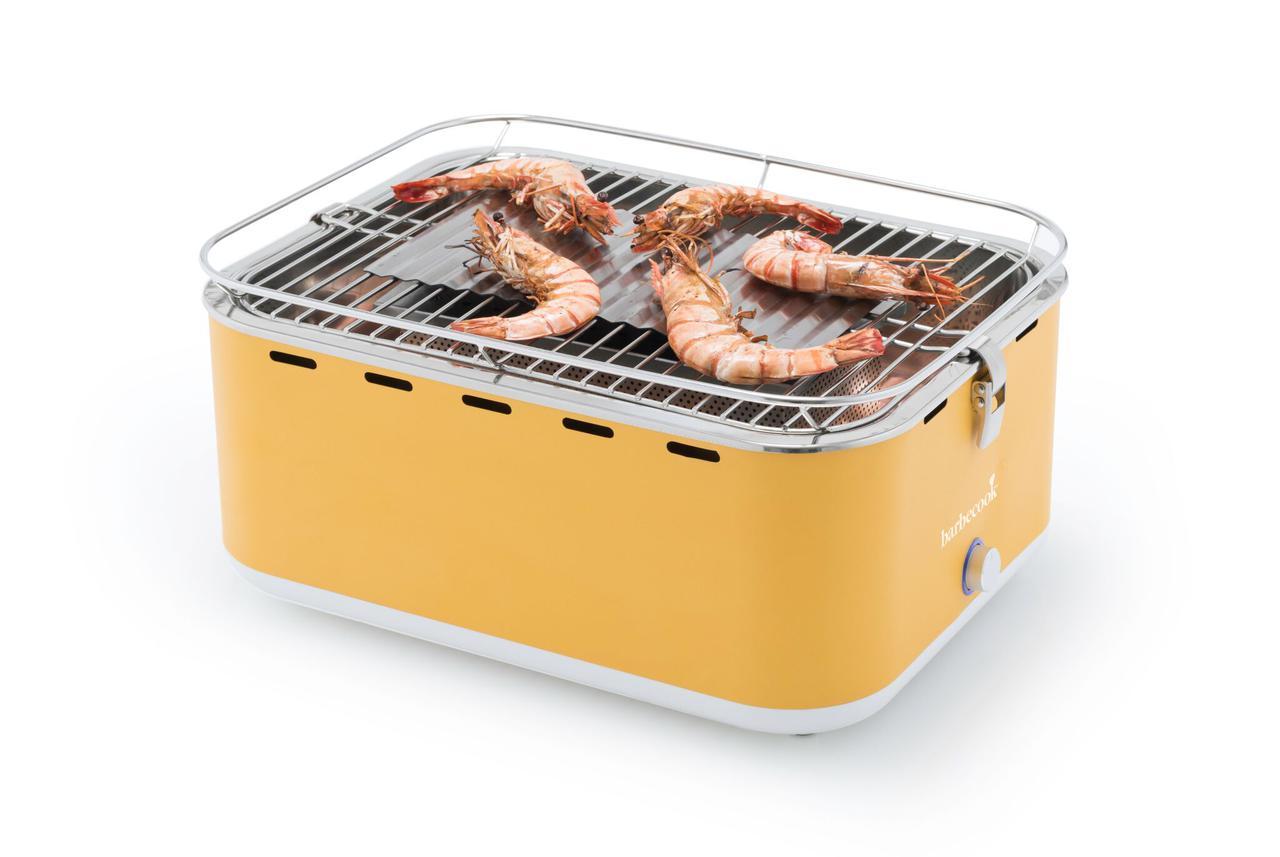 Портативный угольный гриль CARLO, TM Barbecook