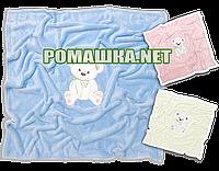 Детский 100х85 см плюшевый махровый плед одеялко мягкий пушистый Минки Minky в коляску для новорожденных 3391