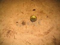 Заглушка головки блока цилиндров (ЯМЗ) 313992-П