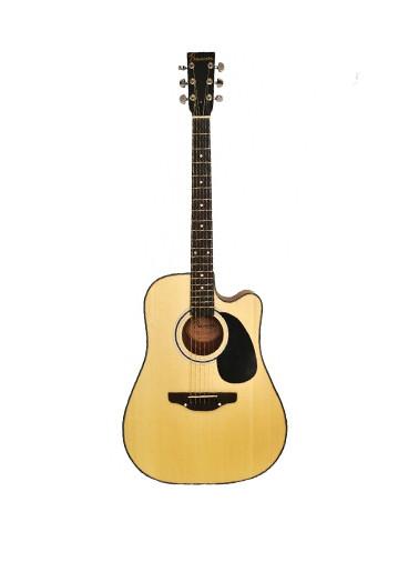 Акустична гітара PREMIERE PD140C