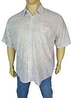 Стильная мужская рубашка 0250 С размер 4XL, фото 1