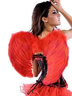 Крылья красные из перьев