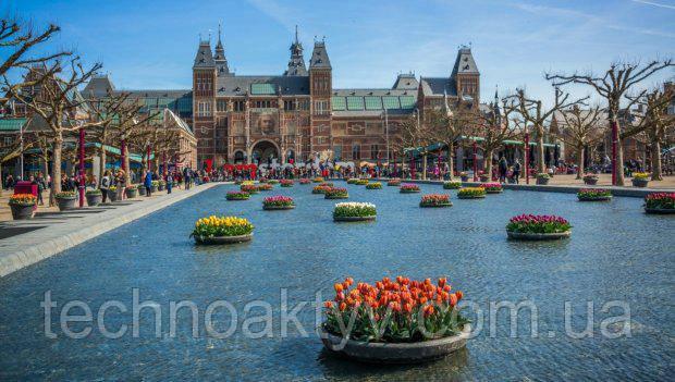 Нидерланды. Здесь в последнюю неделю апреля и первую неделю мая проходит Фестиваль тюльпанов.