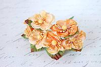 Цветы магнолии для скрапбукинга  диаметр 4 см , 6 шт/уп.,  оранжевого, персикового цвета оптом