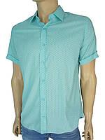 Мужская турецкая рубашка Negredo 0295 в разных цветах