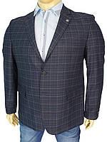 Пиджак для мужчин Daniel Perry Puket BT C-043 в крупную клетку
