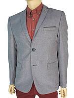 Серый стильный мужской пиджак Daniel Perry Fulya C-2