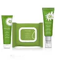 Базовый уход для нормальной и сухой кожи Essentials by ARTISTRY