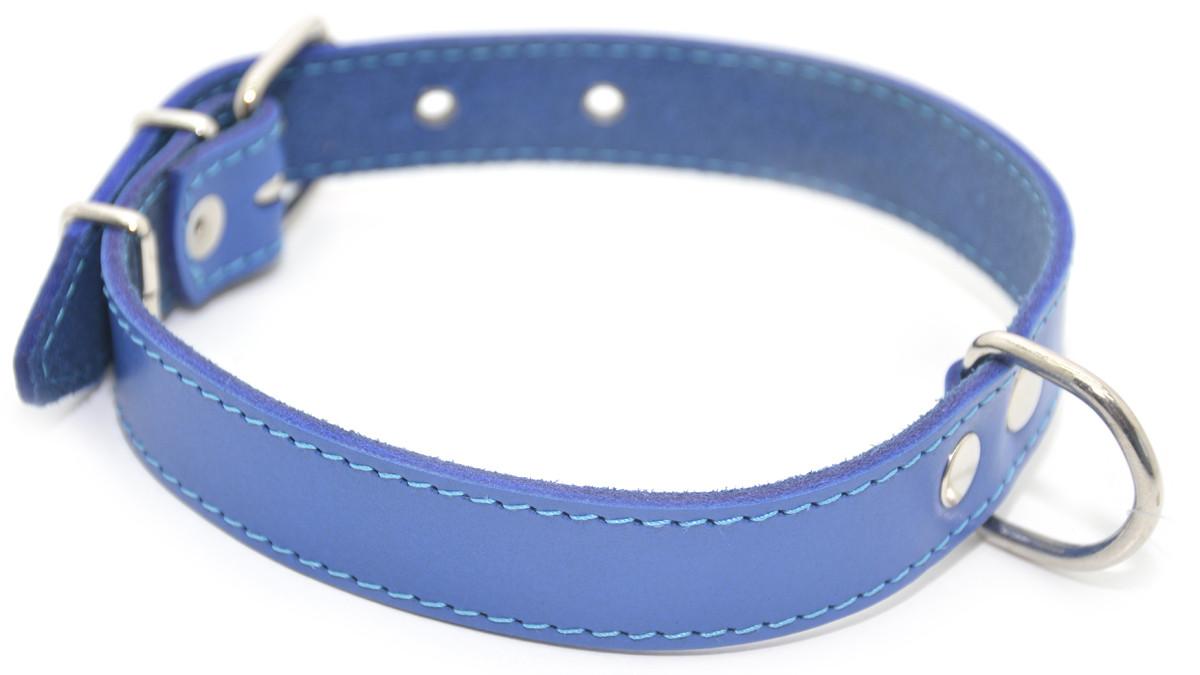 Ошейник для собак кожаный О синий