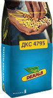 ДКС 4795 ФАО 390 Семена кукурузы Монсанто