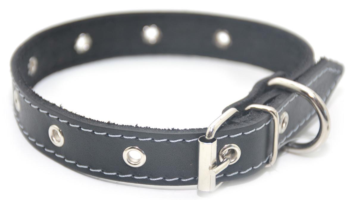 Ошейник для собак кожаный О безразмерный черный