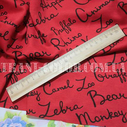 Французский трикотаж принт буквы на красном, фото 2