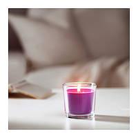 СИНЛИГ Ароматическая свеча в стакане, сиреневоецветение, сиреневый, 7,5 см 00236357 IKEA, ИКЕА, SINNLIG