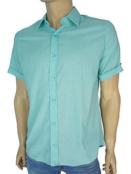 Чоловіча турецька сорочка Negredo 0295 в різних кольорах