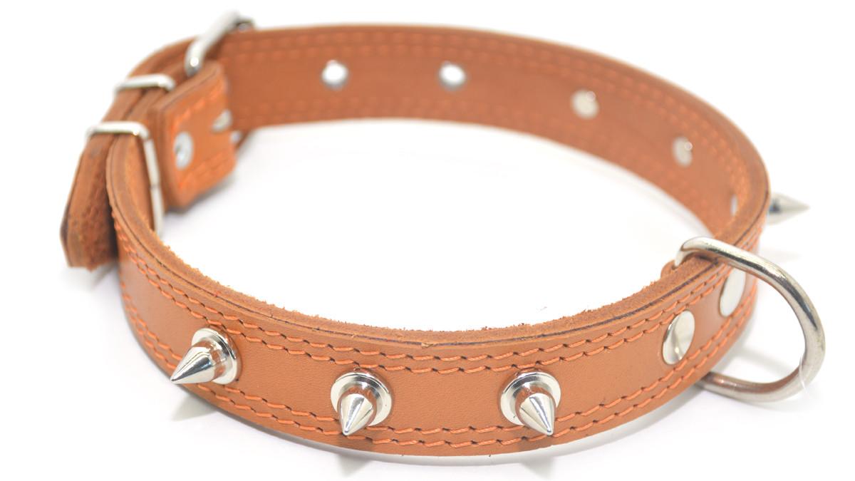 Ошейник для собак кожаный с шипами двойной ОДШ рыжий