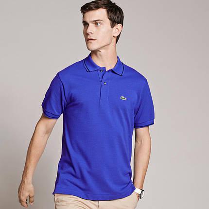 Мужская футболка поло Lacoste синяя топ реплика, фото 2