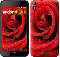 """Чехол на HTC Desire 830 Красная роза """"529c-785-535"""""""