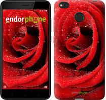 "Чехол на Xiaomi Redmi 4X Красная роза ""529c-778-535"""