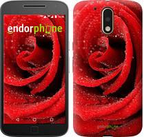 "Чохол на Motorola MOTO G4 Червона троянда ""529c-511-535"""
