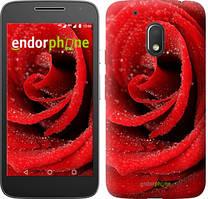 "Чехол на Motorola Moto G4 Play Красная роза ""529c-860-535"""