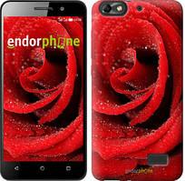 """Чехол на Asus ZenFone 4 Max ZC520KL Красная роза """"529u-1242-535"""""""