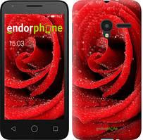 """Чехол на ALCATEL One Touch Pixi 3 4.5 Красная роза """"529u-408-535"""""""