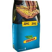 Семена кукурузы Монсанто ДК 291 ФАО 260
