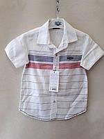 Рубашка нарядная для мальчиков короткий рукав 9-12 лет.Турция