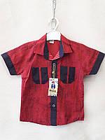Рубашка нарядная для мальчиков короткий рукав 1-4 лет.Турция