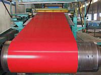 Гладкий лист с полимерным покрытием Ral 3005 0,45 мм . Глянец