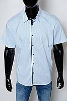 Рубашка мужская с коротким рукавом Radyo Club 44768 батал белая реплика