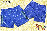 Шорты для девочки коттон  Бархат р.146,152 SmileTime, синие в горох (подросток)