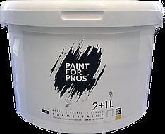 Краска для экрана проектора Paintforpro's на 10 кв.м.