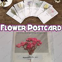 "Открытка-гербарий - ""Flower Postcard"" - 16 х 9 см."