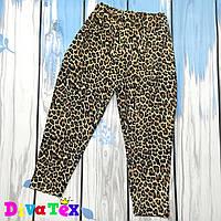 Штанишки для девочек (леопард)