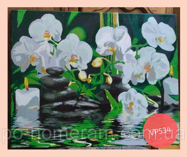нарисованная картина по номерам орхидеи