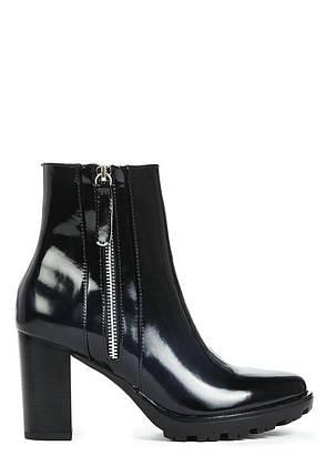 Ботильоны на каблуке JustFab Womens Luanne Black, фото 2