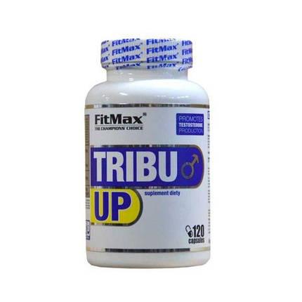 Бустер тестостерона Fit Max Tribu Up 120 caps, фото 2