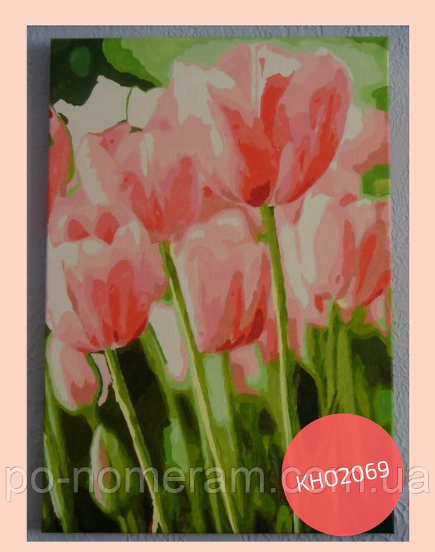 нарисованная картина по номерам тюльпаны