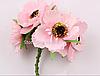 Декоративные цветы дикого мака диаметр 5 см, 6 шт/уп, розового  цвета