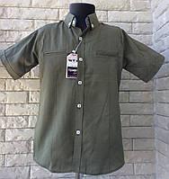 Рубашка 9-11 с коротким рукавом бутылочный, фото 1