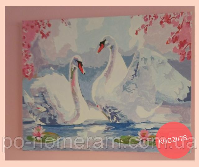 нарисованная раскраска по номерам лебеди