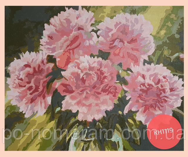 нарисованная раскраска по номерам розовые пионы