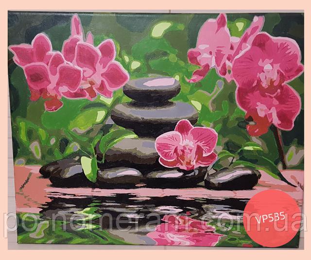 нарисованная картина по номерам розовые орхидеи