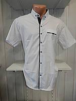Рубашка мужская  CROM стрейч, полу-батал заклепки однотонная 001 \ купить рубашку оптом.