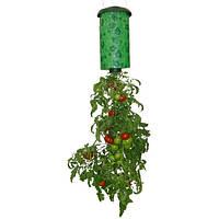 Выращивание помидоров - Upside Down Tomato Planter, для выращивания в домашних условиях